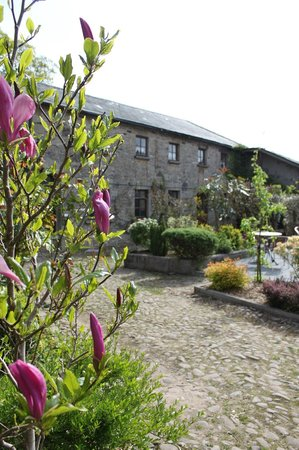 Ballinacourty House: View of Restaurant from the Courtyard