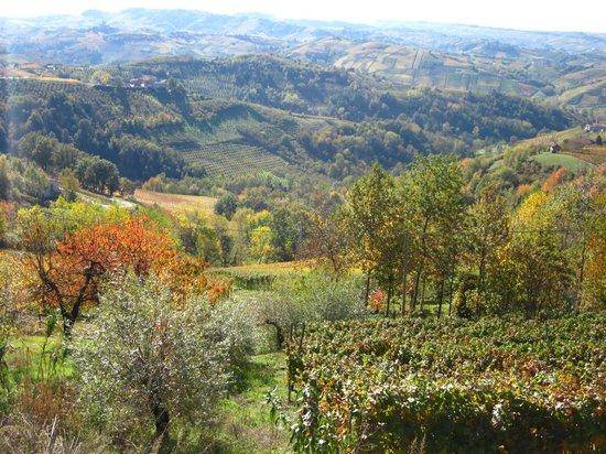 Strada Romantica delle Langhe e il Roero
