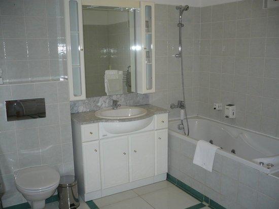 Hotel AGATKA:                   Our bathroom
