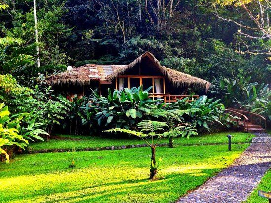 Pacuare Lodge:                   our river view bungalow