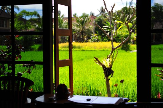 Kebun Indah: View thru the window
