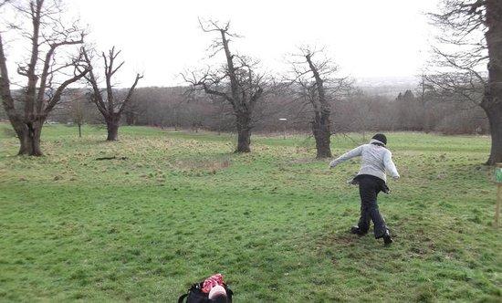 Ashton Court Disc Golf Course :                   Hole 9...