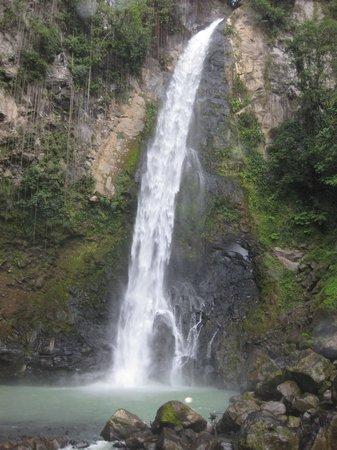 Jungle Bay, Dominica:                   Victoria Falls