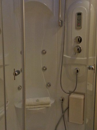 A Park View Hotel:                   The Jacuzzi Shower