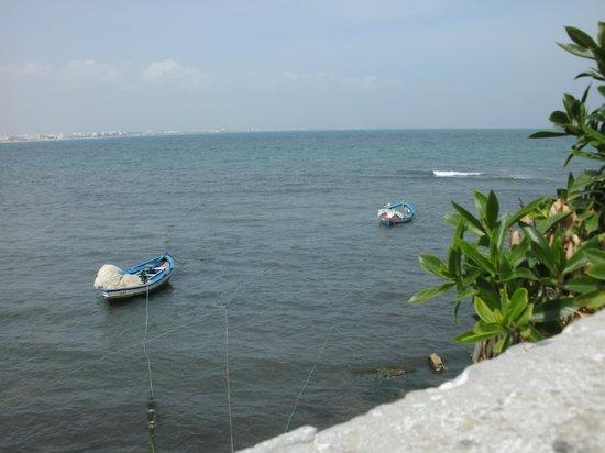 Hotel Quinta Bela Sao Tiago:                   fishing boats