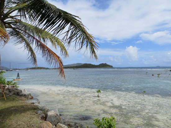 Caribbean Fly Fishing Outfitters