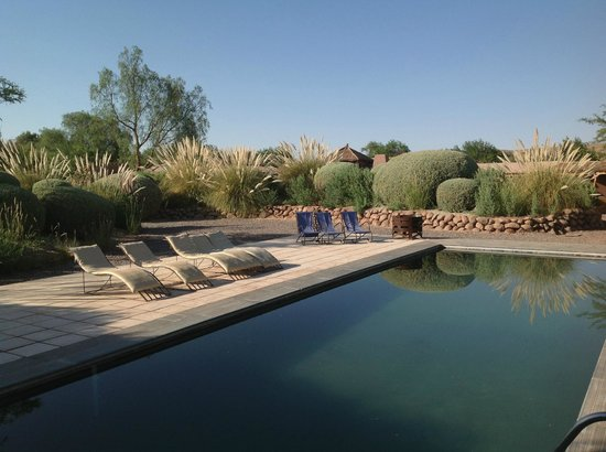 Altiplanico Atacama:                   pool area