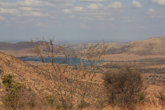 Khakiweed Photographic Safaris:                   A room with a view