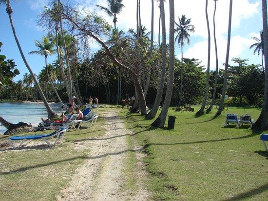 Grand Paradise Samana:                   Resort's beach