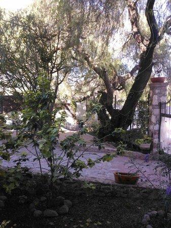 Hotel Quinta Arantxa:                                                       jardín con hamacas y lugar de descanso