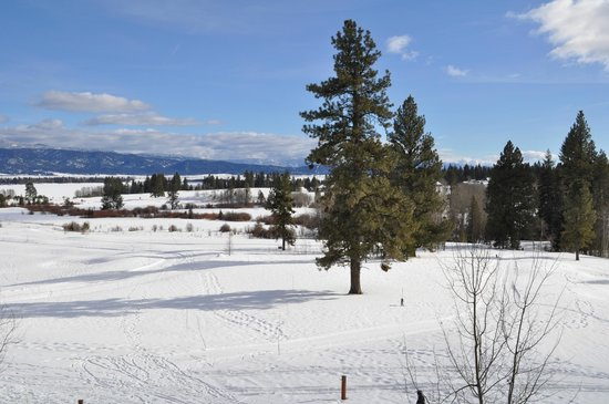 Tamarack Resort:                   Tamarack golf course under a blanket of snow