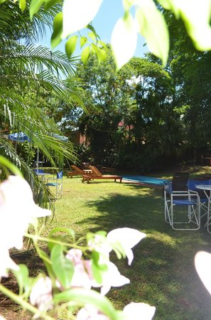 Pop Hostel Natura: Pool and Garden View