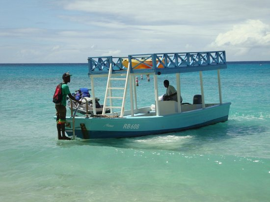 Sugar Cane Club Hotel & Spa:                   Glass bottom boat to see Turtles