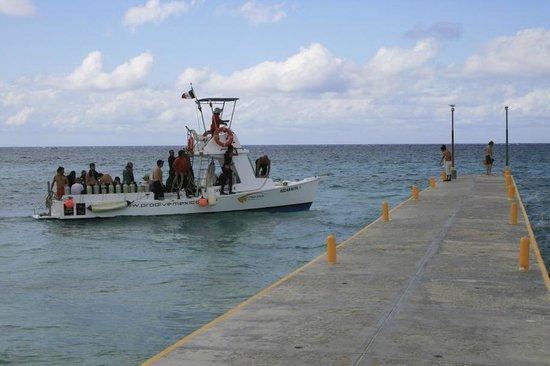 Allegro Cozumel:                                     dive boat