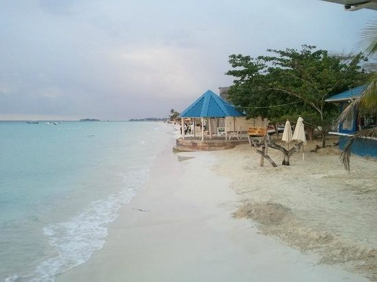 Negril Tree House Resort:                   evening beach