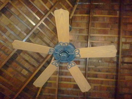 Negril Tree House Resort:                   high-ceiling fan and good AC too