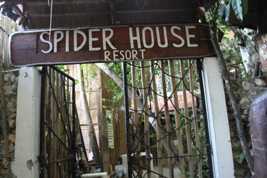 Spider House Resort: the hotel entrance.