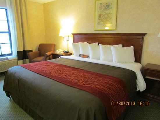 Comfort Inn Airport:                   comfy bed