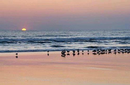 Daytona Beach Extended Stay Hotel:                   Sunrise in Daytona