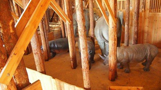 Noah's Ark:                   Inside the Ark