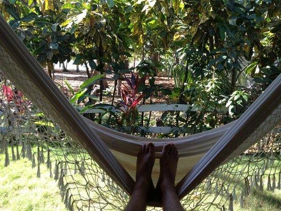 Villas Santa Teresa:                   View from the patio