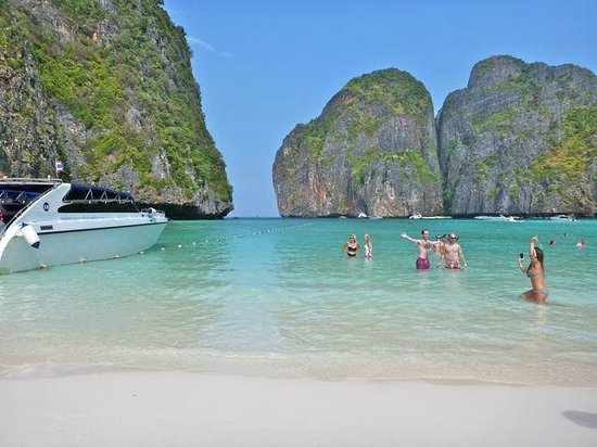 Asian Dolphins Day Tours:                                     Cordoned swimming area Maya Beach