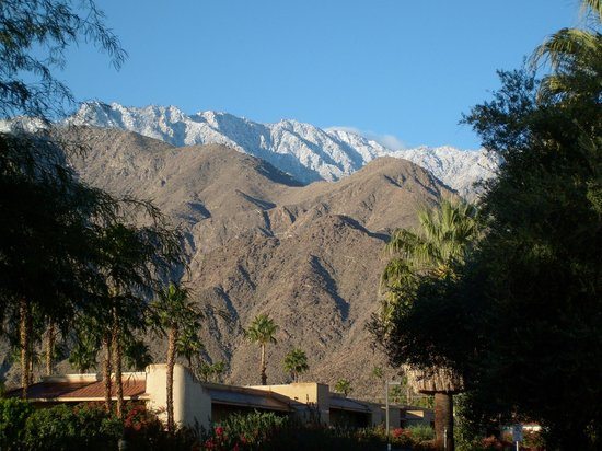 The Monroe Palm Springs: Mountain View from Hotel