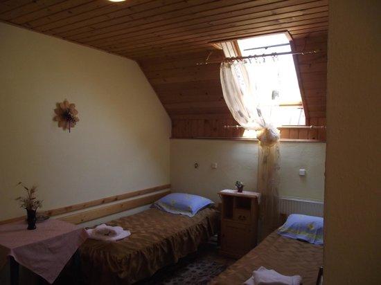 Pensiunea Elena:                   Room with skylight