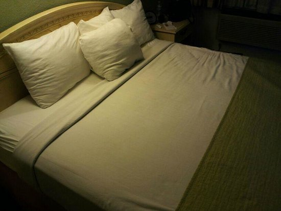 Travelodge San Ysidro:                   Queen Bed