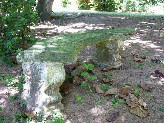 Kingfisher Lodge:                   Garden