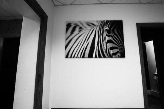 Hostel Ufa: Room
