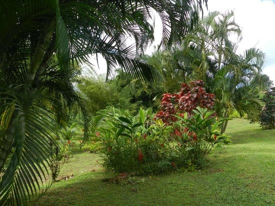 La Chaudiere:                   Le jardin familial