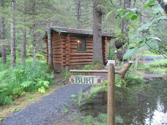 Alaska Creekside Cabins:                   Loved my cabin!
