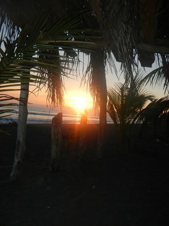 Cocomar Beachfront Hotel and Island Resort:                   Sunset from the thatched hut on their beach