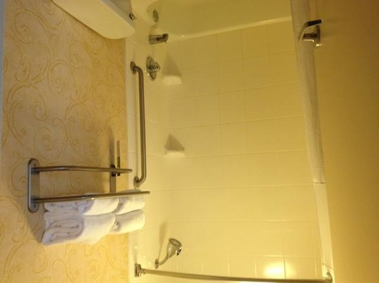 SpringHill Suites Memphis Downtown: bathroom
