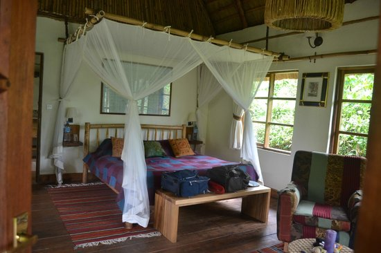 Bwindi Lodge:                   Inside our Banda