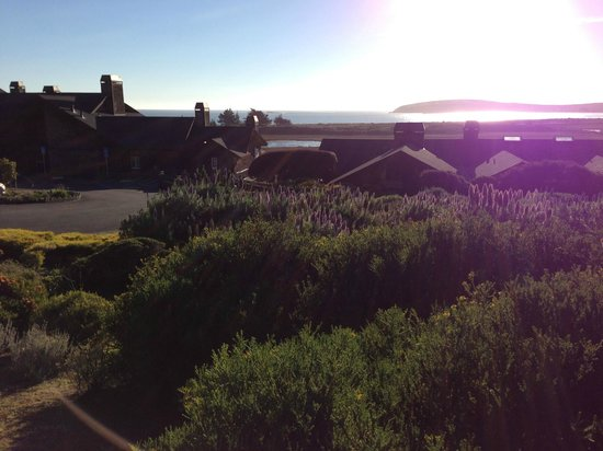 Bodega Bay Lodge:                   the sun warmed us just right!