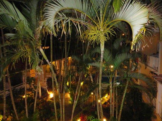 Auberge de la Langouste:                                     Vista nocturna del jardin                                 