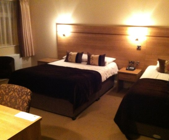 Ivanhoe Inn and Hotel:                   Room