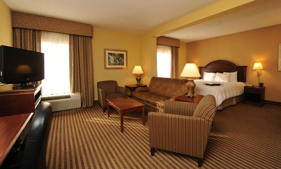 Hampton Inn Morganton : King Suite