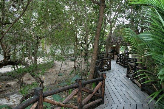 Xaloc Resort:                   Haupteingang