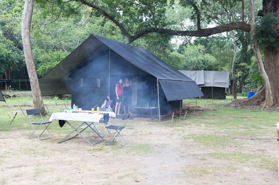 Master Campers: Yala - campsite