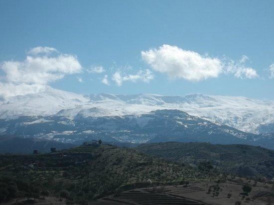 Cortijo Rural Torreabeca:                   bonitas vistas