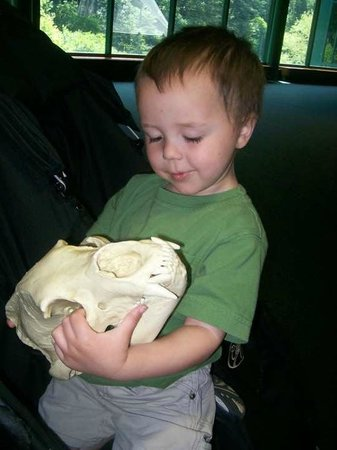 Newport News, VA:                   Hands-on activities in Discovery Centers