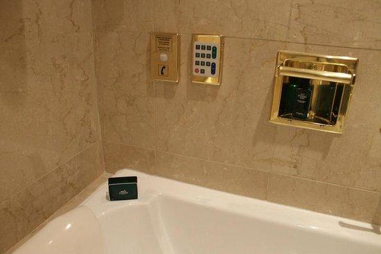 Alvear Palace Hotel :                                     bathtub