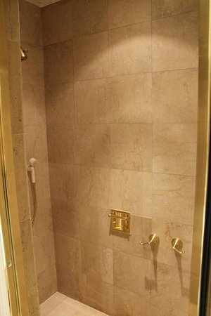 Alvear Palace Hotel:                                     huge shower