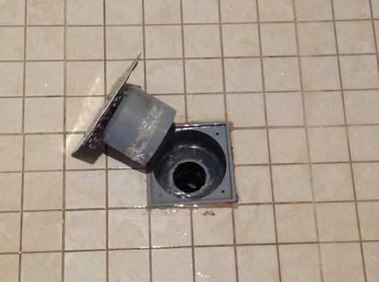 NH Punta Cana:                                     que asco!! laven los desagues !