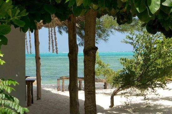 Garden Beach Bungalows:                   Vue de la terrasse du lodge