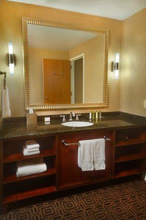 Doubletree by Hilton Hotel St Louis - Chesterfield: Bathroom