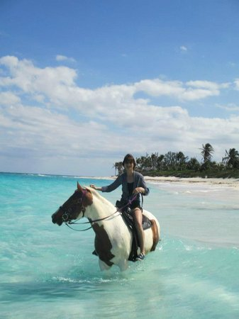 Governor's Harbour, Eleuthera: Beach ride